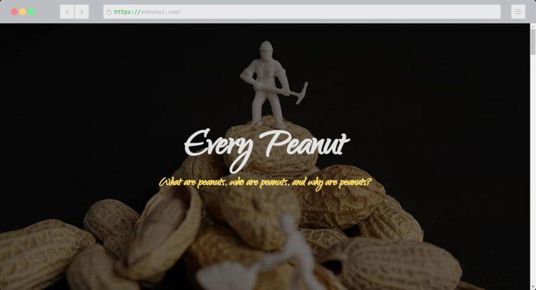 Website Portfolio Every Peanut