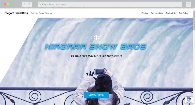 Website Portfolio Niagara Snow Bros